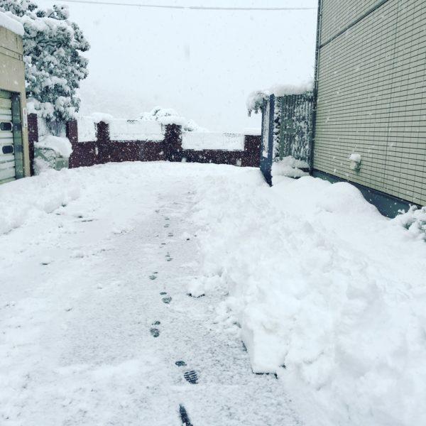 終わらない雪かき。。。 舞鶴、福知山 カーポートならルーセントへ