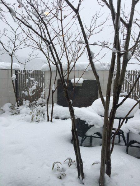 雪対策は大丈夫ですか?