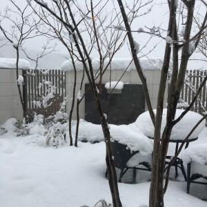 お庭の雪対策